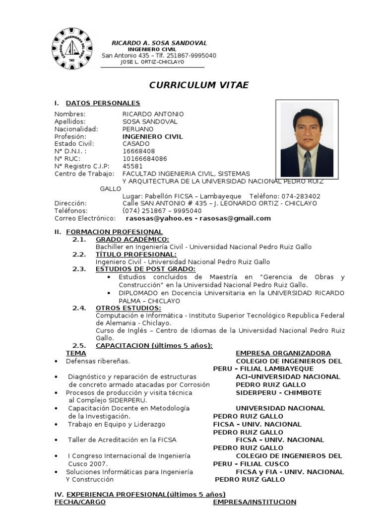 Bonito Currículum Para Ingenieros Viñeta - Ejemplo De Colección De ...