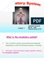 Surabhi Panwar Circulatory System_2