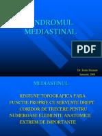 mediastin