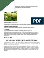 La Guayaba