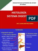 Histología digestivo