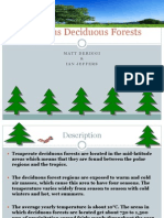 Delicious Deciduous Forests