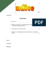 Determinantes - Trabajo =D.docx