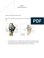 Anatomi Dan Histologi