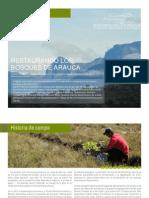 Restaurando Los Bosques de Arauca