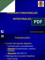PRUEBAS FUNCIONALES 97-03