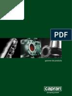 Catalogue_pompes immerg�es CAPRARI.pdf