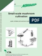 Small Scale Mushroom