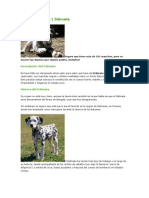 Nuevo Documento de Microsoft Word (17)