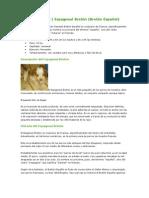 Nuevo Documento de Microsoft Word (19)