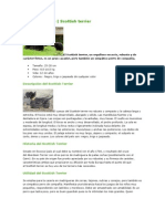 Nuevo Documento de Microsoft Word (30)