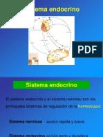 9. Sistema Endocrino