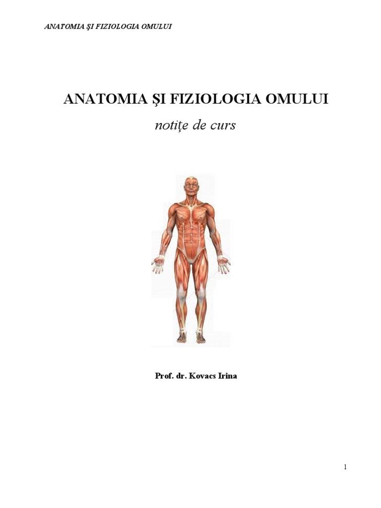 Sanitar Curs Anatomie Varianta Buna