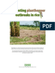 Preventing planthopper outbreaks in rice