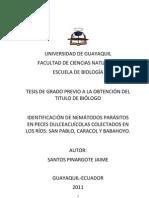 Iidentificacion de nemátodos parasitos.pdf