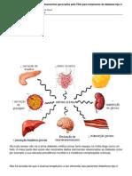 Em 1 Semana Tres Novos Medicamentos Aprovados Pelo FDA Para Tratamento Do Diabetes Tipo 2