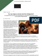 Por que alguns animais são tão inteligentes_ - Scientific American Brasil