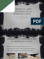 ####HORMONAS  QUE PARTICIPAN EN LA REPRODUCCIÓN