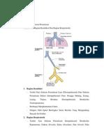 Histolohi saluran pernapasan
