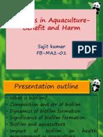 sujit- cife - role of Biofilm in aquaculture- Final