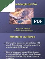 HIDROMETALURGIA DE ORO-diapositvas ing. muñiz