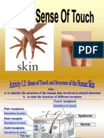 1.2 Sense of Touch