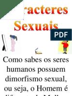 Caracteres Sexuais