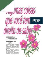 Manual Zinho