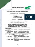 2009ORLE2060_0_0.pdf