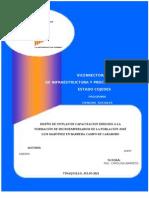 Tesis Sobre Capacitacion de Microempresarios-2