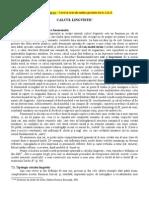 Calcul Lingvistic [PDF]