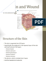 Phase 1_week 1_the Skin Ppp