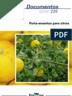 Porta-enxertos para citros