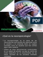 1.Inicios de La Neuropsicologia