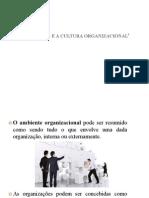 ambiente e a cultura organizacional.pptx