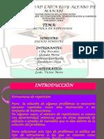 ESTRUCTURA DE REPETICIÓN GRUPO 4