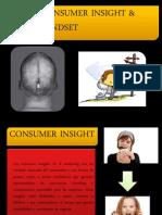 Mindset & Consumer Insight