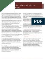 auditando-cultura-riesgo.pdf