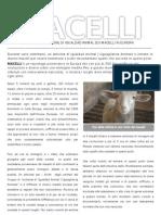 Dossier Investigazione nei macelli europei