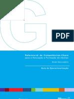 RCC_guia_operacionlizacao