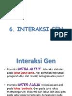 6. Interaksi Gen