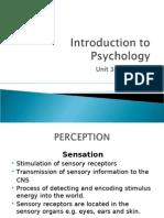 Psyc Unit 3 Perception 2