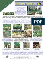 FAO Micro Jardins Brochure