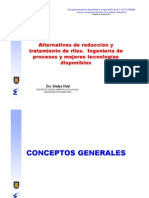 Alternativas de Reducción y Tratamiento de RILES