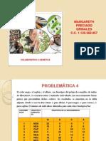 aporte_problematica_4