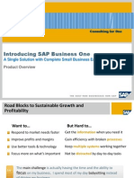 Sap b1 Overview June 08 Cfo 1228314233 Cemsvxy4