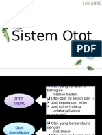 2-Sistem Otot 2