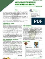 Destaques FSEH - Ep26 - Nº 9