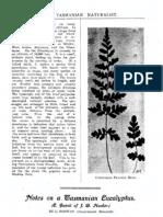 TasNat 1907 Vol1 No3 Pp9-11 Rodway TasEucalyptus