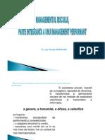 2_3 Steluta Nisipeanu - Managementul Riscului